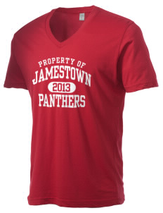Jamestown Elementary School Panthers Alternative Men's 3.7 oz Basic V-Neck T-Shirt