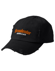 Broadwater Elementary School Gorillas Embroidered Distressed Cap
