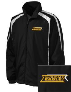 Avondale Elementary School Eagles Embroidered Men's Colorblock Raglan Jacket
