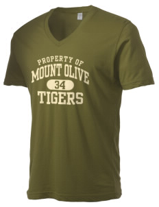 Mount Olive Elementary School Tigers Alternative Men's 3.7 oz Basic V-Neck T-Shirt