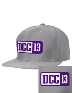 Deep Creek Central Elementary School Hornets Embroidered D-Series Cap