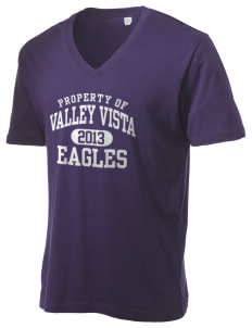 Valley Vista High School Eagles Alternative Men's 3.7 oz Basic V-Neck T-Shirt