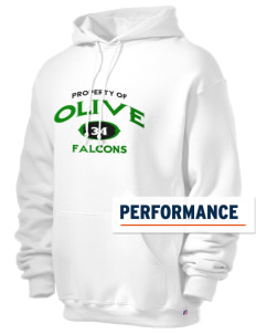 Olive Elementary School Falcons Russell Men's Dri-Power Hooded Sweatshirt