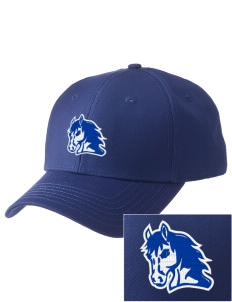 Ruby Valley Elementary School Mustangs  Embroidered New Era Adjustable Structured Cap