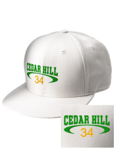 Cedar Hill Elementary School Eagles  Embroidered New Era Flat Bill Snapback Cap