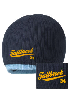 The New School Fallbrook Embroidered Champion Striped Knit Beanie