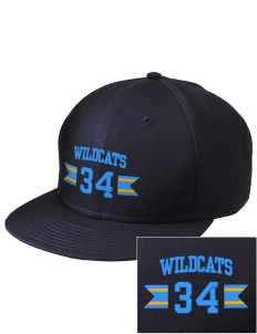 Alexander Elementary School Wildcats  Embroidered New Era Flat Bill Snapback Cap