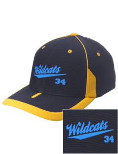 Alexander Elementary School Wildcats Embroidered M2 Universal Fitted Contrast Cap