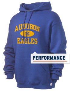 Audubon Elementary School Eagles Russell Men's Dri-Power Hooded Sweatshirt