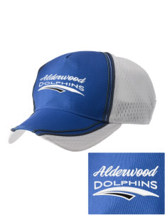 Alderwood Elementary School Dolphins  Embroidered Champion Athletic Cap