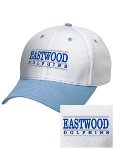 Eastwood Elementary School Dolphins Embroidered New Era Snapback Performance Mesh Contrast Bill Cap
