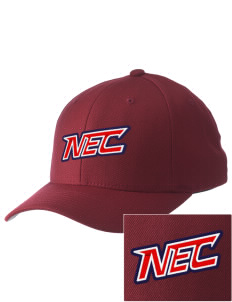 New England College Pilgrims Embroidered Pro Model Fitted Cap