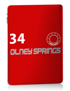 Olney Springs Apple iPad Skin