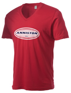Anniston Alternative Men's 3.7 oz Basic V-Neck T-Shirt