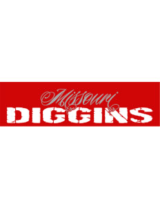 "Diggins Bumper Sticker 11"" x 3"""