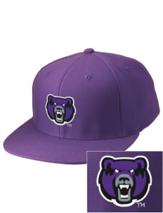 University of Central Arkansas Bears Embroidered Diamond Series Fitted Cap