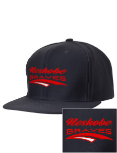 Neshobe Elementary School Braves Embroidered D-Series Cap