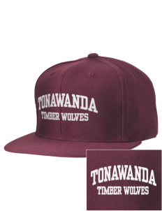 Tonawanda Junior High School Timber Wolves Embroidered D-Series Cap