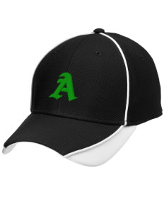 Adams Elementary School Eagles Embroidered New Era Contrast Piped Performance Cap