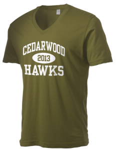Cedarwood Elementary School Hawks Alternative Men's 3.7 oz Basic V-Neck T-Shirt