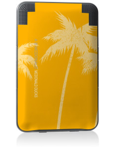 A B McDonald Elementary School McDonald Ducks Kindle Keyboard 3G Skin