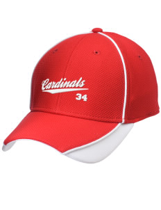 Langdon Area Elementary School Cardinals Embroidered New Era Contrast Piped Performance Cap