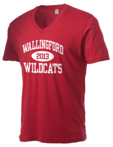 Wallingford Elementary School Wildcats Alternative Men's 3.7 oz Basic V-Neck T-Shirt
