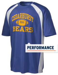 Cedarhurst Elementary School Bears Men's Dry Zone Colorblock T-Shirt