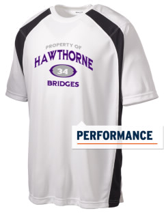 Hawthorne Academy Bridges Men's Dry Zone Colorblock T-Shirt