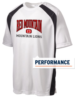 Red Mountain High School Mountain Lions Men's Dry Zone Colorblock T-Shirt