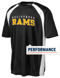 Heliotrope Elementary School Rams Men's Dry Zone Colorblock T-Shirt