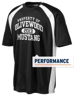 Olivewood Elementary School Mustang Men's Dry Zone Colorblock T-Shirt
