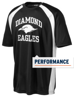 Diamond Elementary School Eagles Men's Dry Zone Colorblock T-Shirt