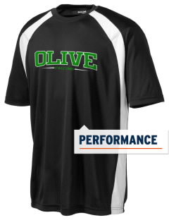 Olive Elementary School Falcons Men's Dry Zone Colorblock T-Shirt