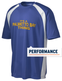 Palmetto Bay Academy Eagles Men's Dry Zone Colorblock T-Shirt