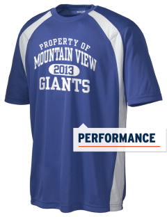 Mountain View Elementary School Giants Men's Dry Zone Colorblock T-Shirt