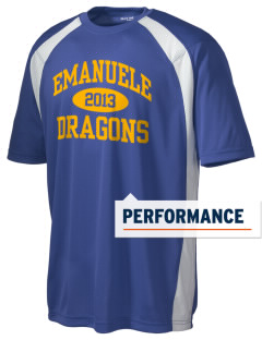 Emanuele Elementary School Dragons Men's Dry Zone Colorblock T-Shirt