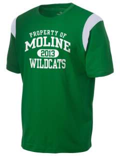Moline Elementary School Wildcats Holloway Men's Rush T-Shirt