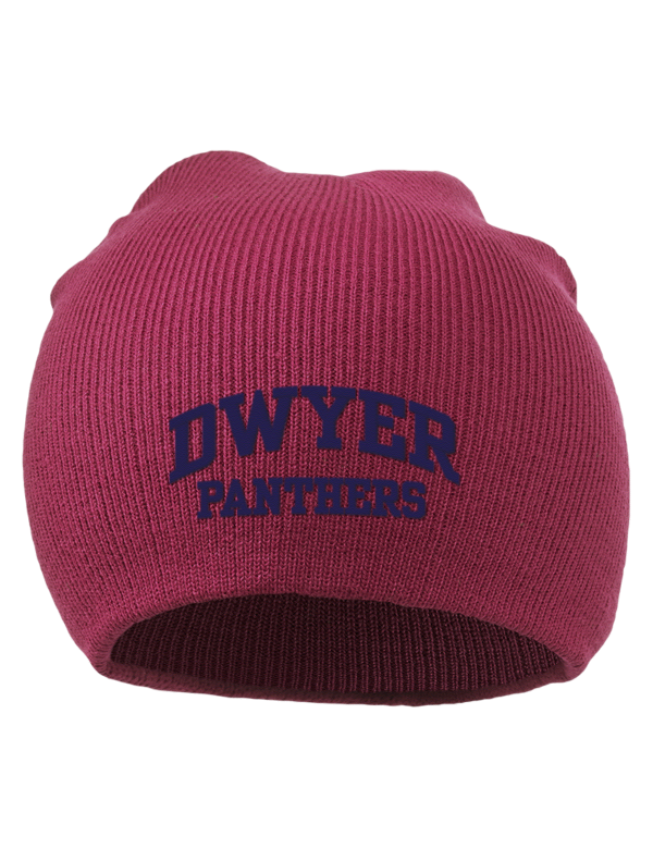 W T Dwyer High School Panthers Embroidered Acrylic Beanie