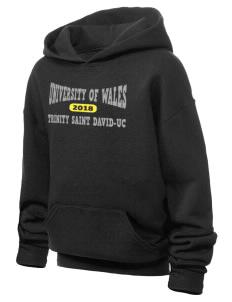 University of Wales Trinity Saint David Trinity Saint David JERZEES Youth Hooded Sweatshirt