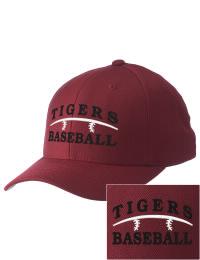 Elsinore High School Baseball