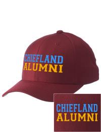 Chiefland High School Alumni