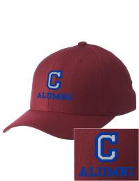 Chana High School Alumni