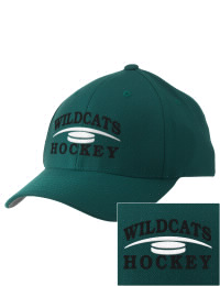 Alpena High School Hockey