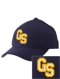 Glenbrook South High School Alumni