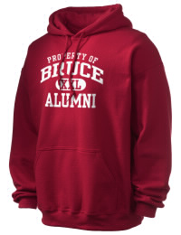 Bruce High School Alumni