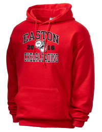 Easton Area High SchoolCheerleading