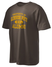 Glenbrook North High School Alumni