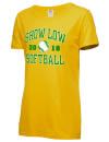 Show Low High SchoolSoftball