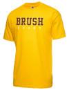 Brush High SchoolRugby